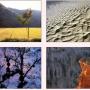 Ephemera 1.0 :  Galerie de photos en économiseur d'écran